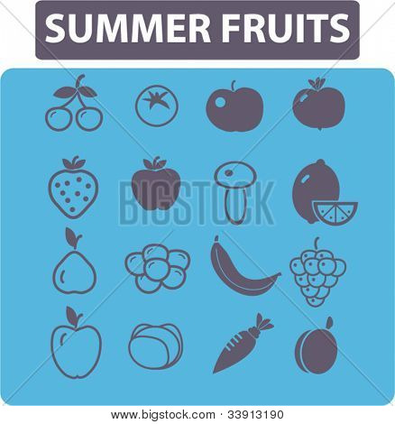 summer fruits icons set, vector