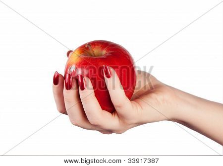 Red apple in hand on a white background