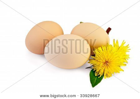 Eggs With Dandelions