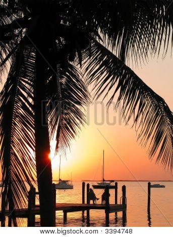 Tropical pôr do sol sobre a água com Palm Tree Silhoutte