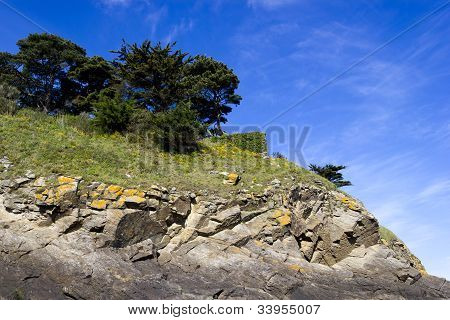 Landscape With A Pine Trees On A Cliff