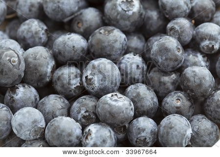 Food Backgrounds: Juicy Blueberries