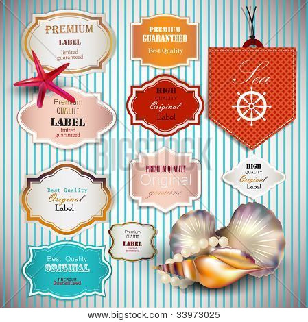 Set of Superior Quality and Satisfaction Guarantee Badges, Labels, Tags with shells and place for text. Retro vintage style.