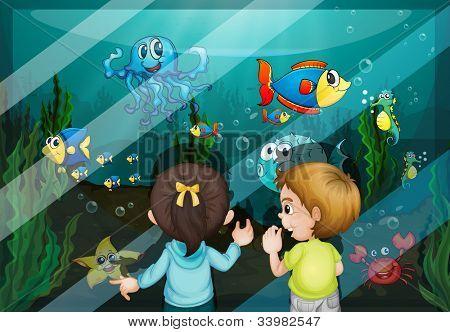 Illustration of kids at the aquarium -