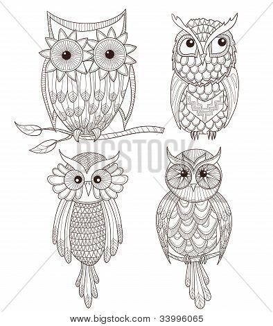Set Of Cute Owls.