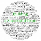 picture of change management  - Building a Successful Team concept in word tag cloud on white background - JPG