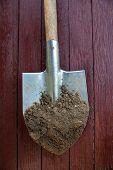 Black Earth (ground, Soil, Dirt) On The Metal Spade (shovel). Agriculture. Farming. Black Soil. poster