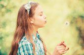 Dreams Come True. Dandelion Full Symbolism. Summertime Fun. Beliefs About Dandelion. Girl Making Wis poster