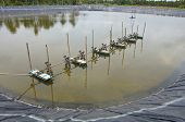 picture of aeration  - The aeration turbines in the shrimp farm for fresh water - JPG