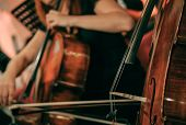 Symphony orchestra on stage, hands playing cello poster