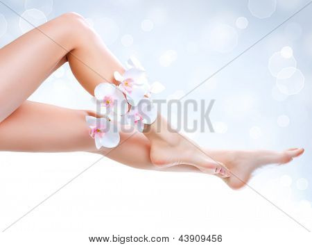 Healthy Legs. Spa. Long woman legs isolated on white. Skincare. Depilation. Epilation