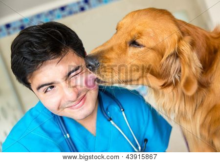Cute dog giving a kiss to the vet after a checkup