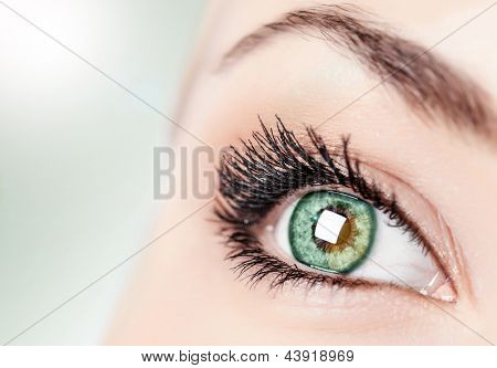 One open green eye, ophthalmology clinic, healthy sight, natural makeup, black mascara, face part isolated on gray background