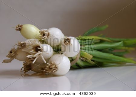 Green_onions
