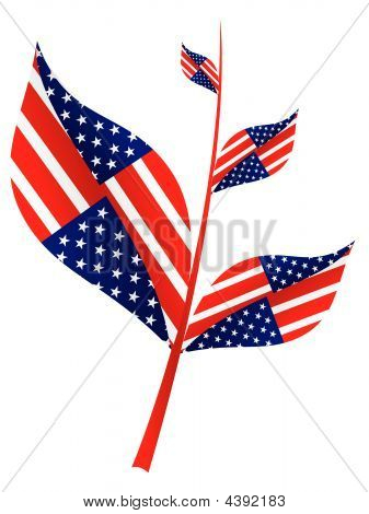 Tree Branch With American Flag On It