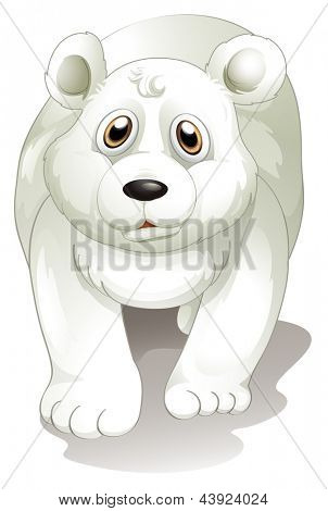 Illustration of a giant white polar bear on a white background