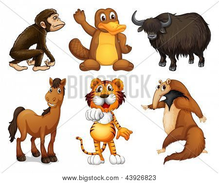 Illustration of the six different kinds of four-legged animals on a white background