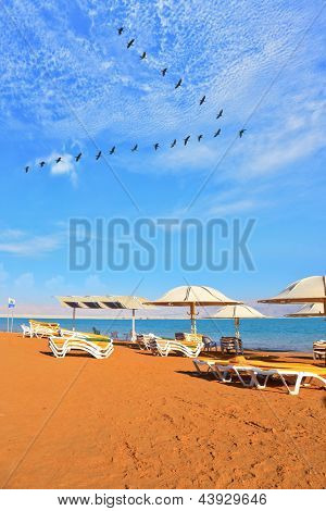 A nice sunny day at the Dead Sea resort. Yellow beach chairs and umbrellas waiting for tourists. Over the sea flying flock of cranes