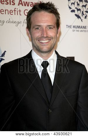 LOS ANGELES - MAR 23:  Michael Vartan arrives at the 2013 Genesis Awards Benefit Gala at the Beverly Hilton Hotel on March 23, 2013 in Beverly Hills, CA