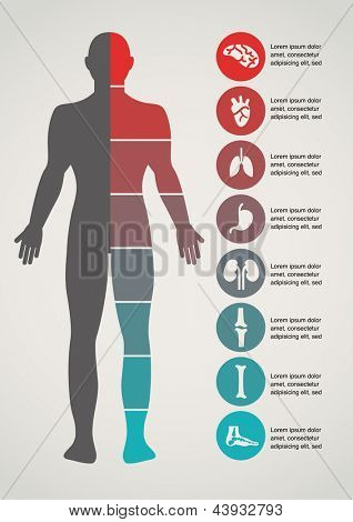 Medical and healthcare icons and data elements, infographic