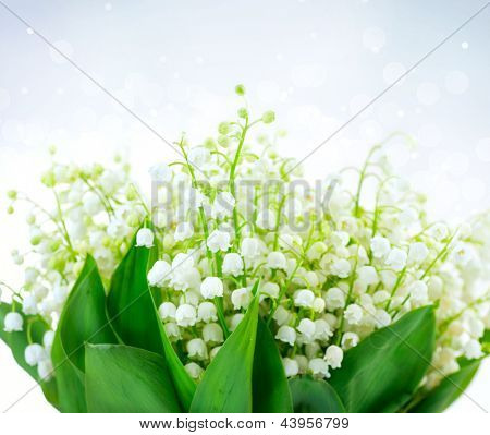 Lily-of-the-valley Flowers Design. Bunch of White Spring Flower