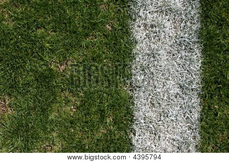 Rugged Grass And Yardline Of A Football Field