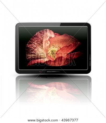 Vector lcd, plasma tv with beautiful poppy