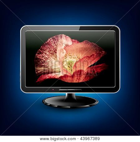 Vector  lcd, plasma, tv with beautiful poppy