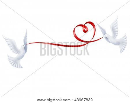 Pair white doves with red ribbon in the shape of heart. Vector isolate on white background