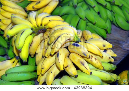 Bunch Of Yellow And Green Bannanas