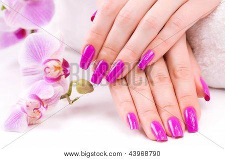 Beautyful manicura con orquídeas fragantes y toalla. Spa