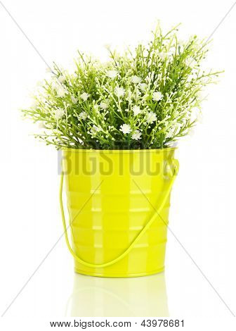 Flores decorativas isolados no branco