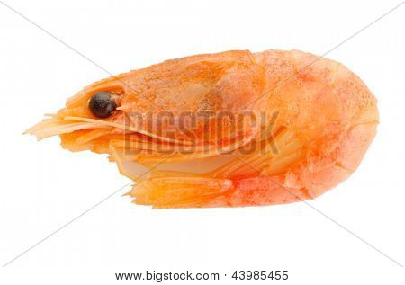 Boiled shrimp isolated on white