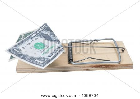 Dollar In Mouse Trap