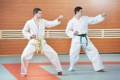 pic of taekwondo  - Two young adult people in kimono training taekwondo martial art at gym - JPG