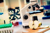 foto of pesticide  - Chemical Laboratory of the Food supply  - JPG