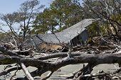 Постер, плакат: дом разрушен потоп окруженный плавника