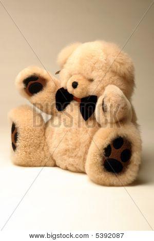 Teddy Bear With Bow Tie