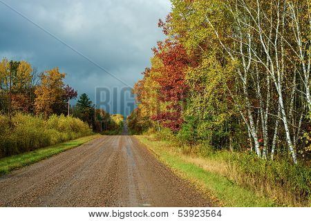 Wet Country Road, Autumn