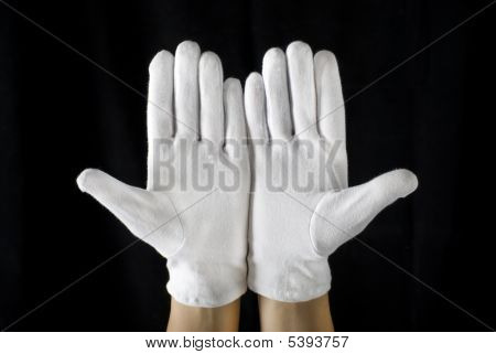 White Gloves Open Palms