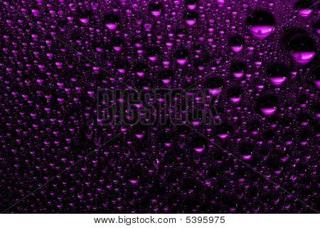 macro of purple water drops