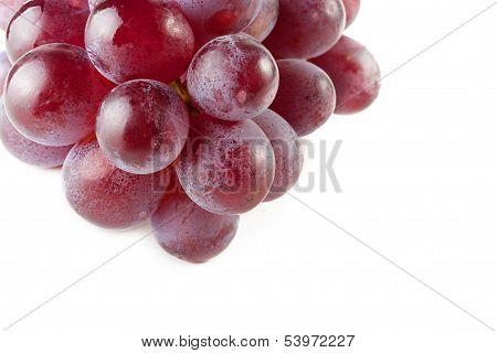 Grapes berries