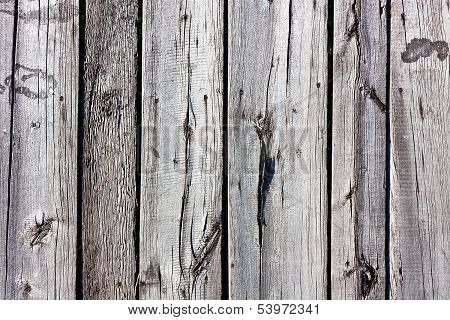 Gray Old Wood Texture