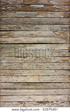 Wood Crack  Texture