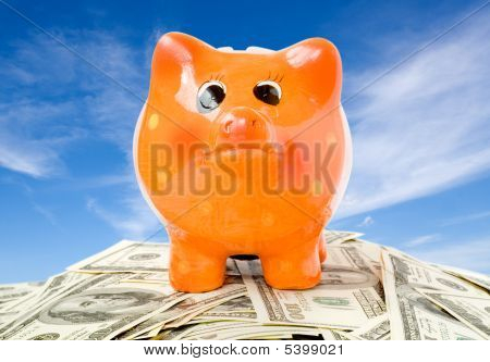 Business Concept. Piggy Bank With Money