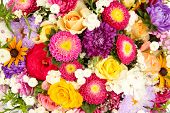 picture of bunch roses  - Bright flowers background - JPG