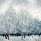 Vintage Background Of A Winter Landscape On Textured Canvas