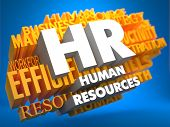 Human Resources. Wordcloud-Konzept.