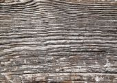 Weathered Wood Lines Natural Abstract Texture Background. poster