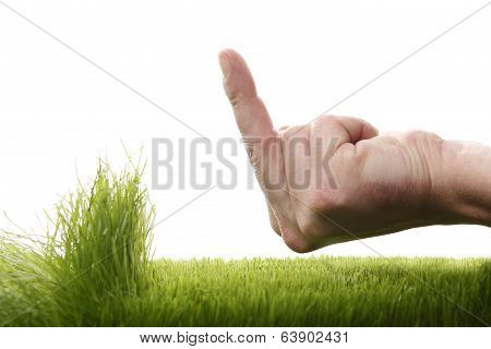 Young Man Is Annoyed About Growing Grass